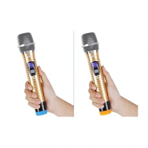 loa karaoke dalton ts 12g450x ava 8