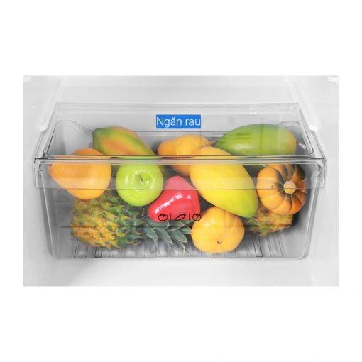 Tủ lạnh Aqua Inverter 186 lít AQR T219FA PB ava 7