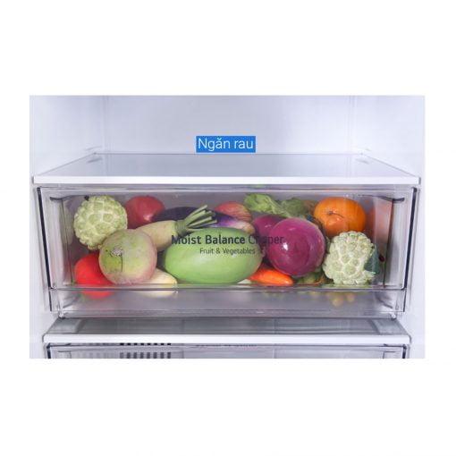 Tủ lạnh LG Inverter 305 lít GR D305MC ava 6