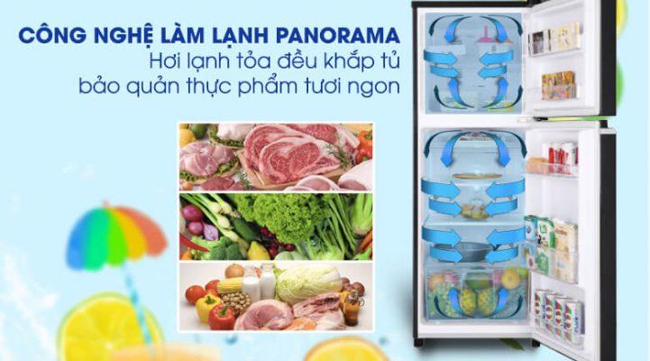 Tủ lạnh Panasonic Inverter 188 lít NR-BA229PKVN 5