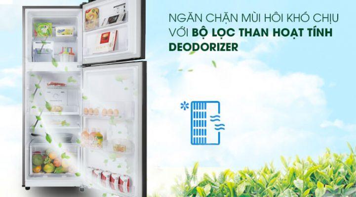 tủ lạnh Samsung Inverter 236 lít RT22M4032BY SV 5