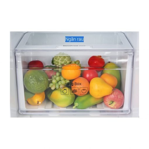 tủ lạnh Samsung Inverter 236 lít RT22M4032BY SV ava 9