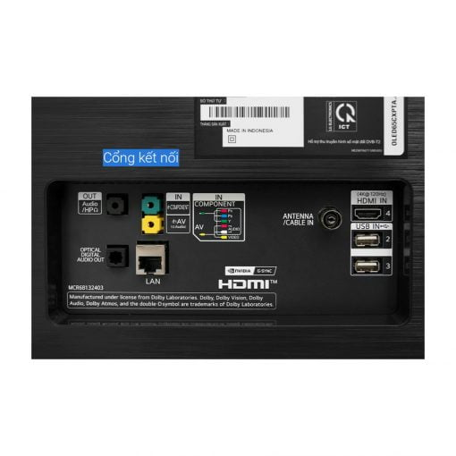 Smart Tivi OLED LG 4K 65 inch 65CXPTA ava 4